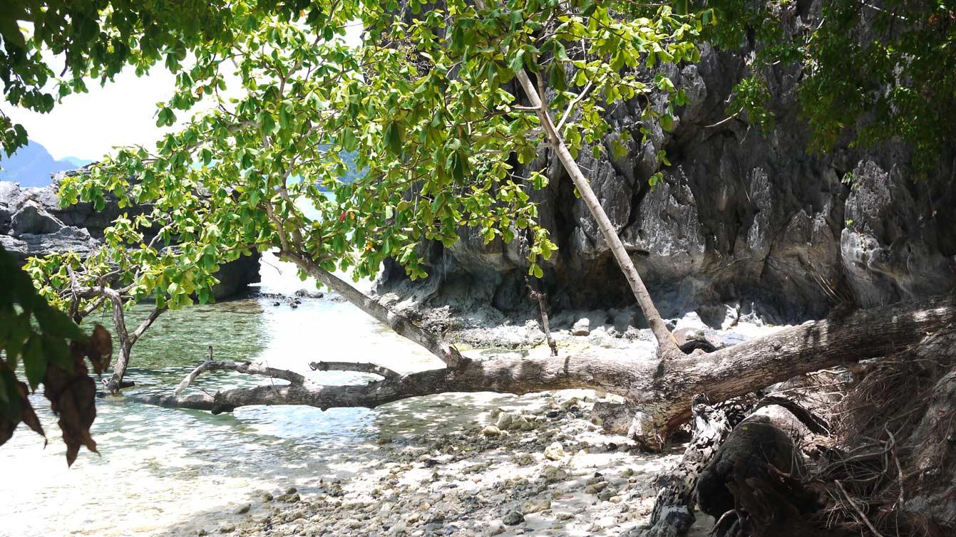 archipel-bacuit16