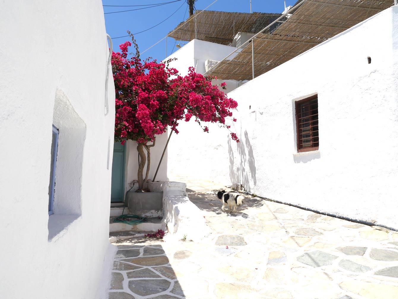 faros-sifnos-grece11