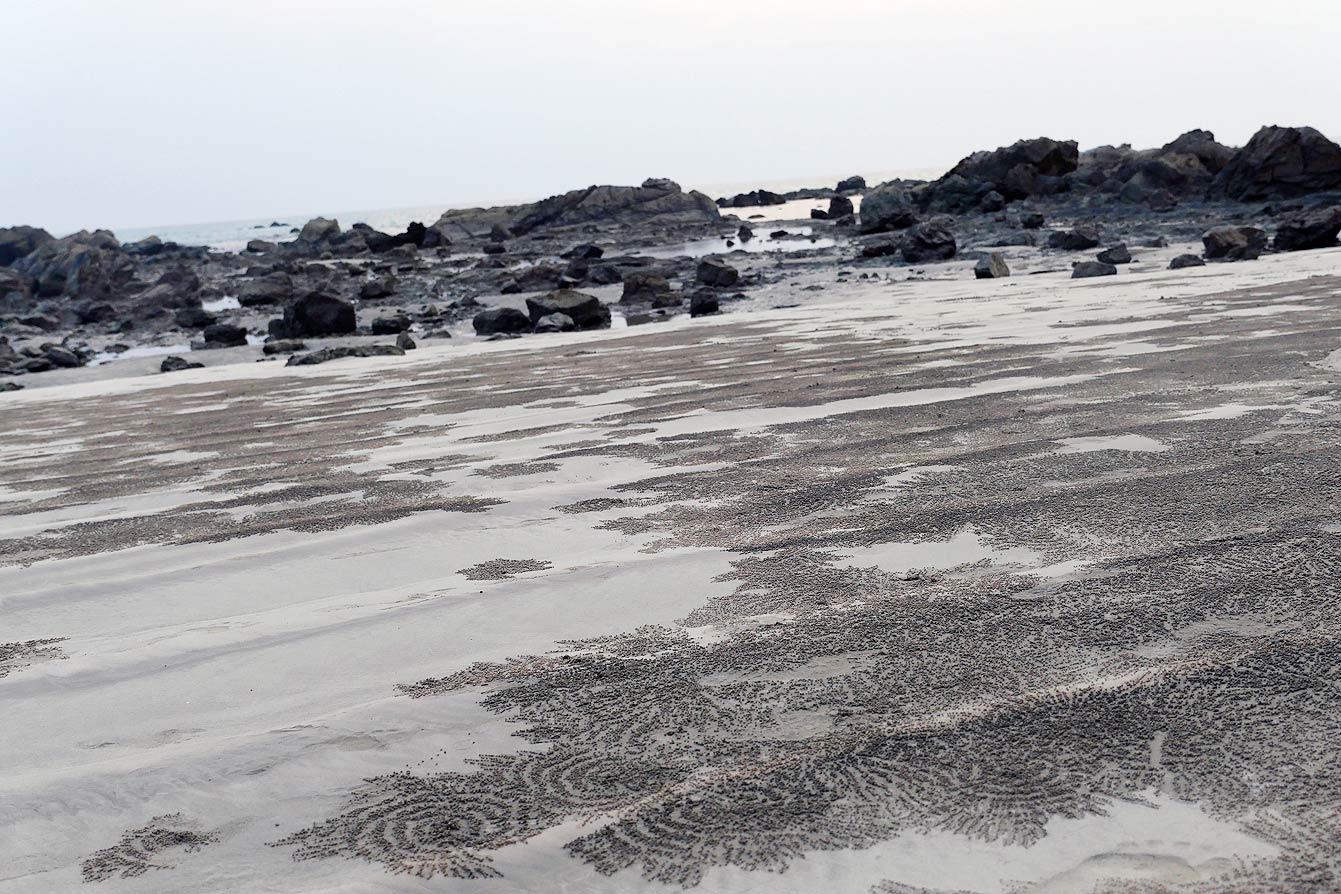 ngapali-beach-2-29