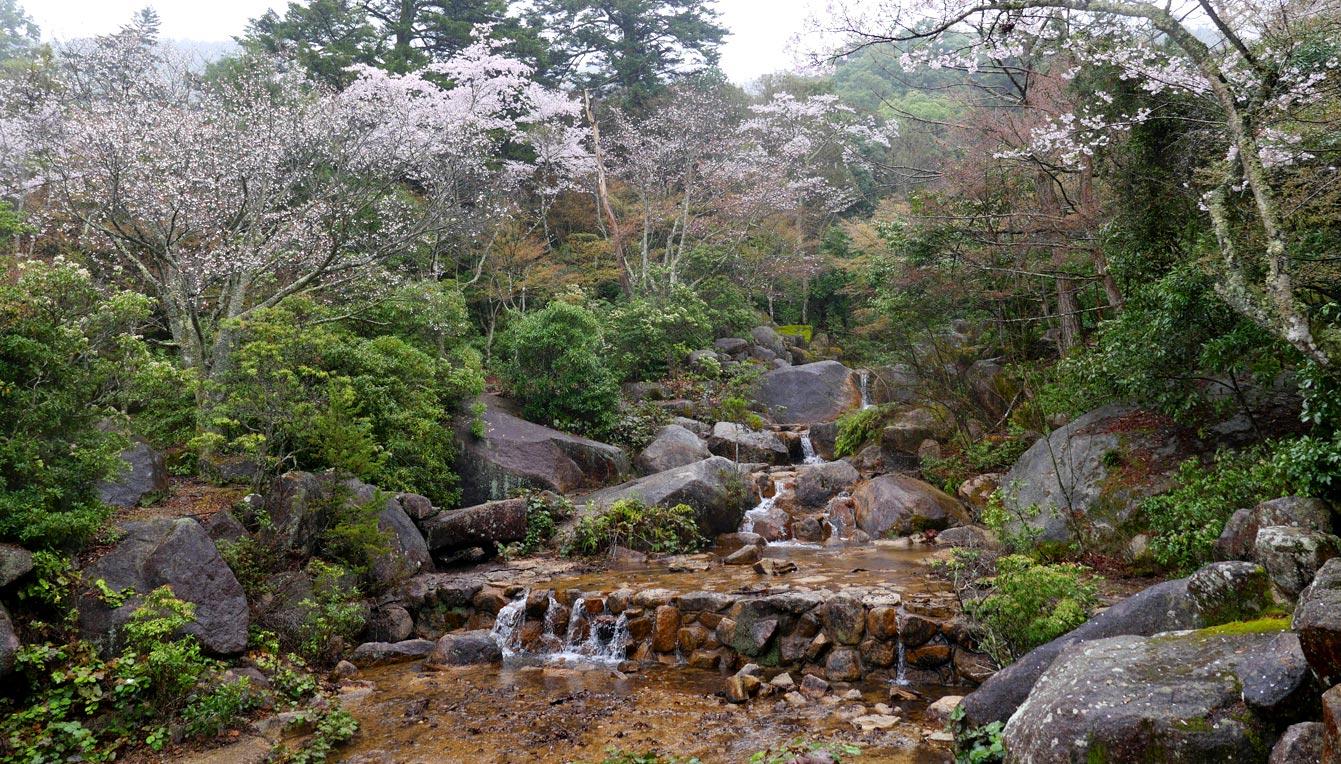 Momijidani-Park-39