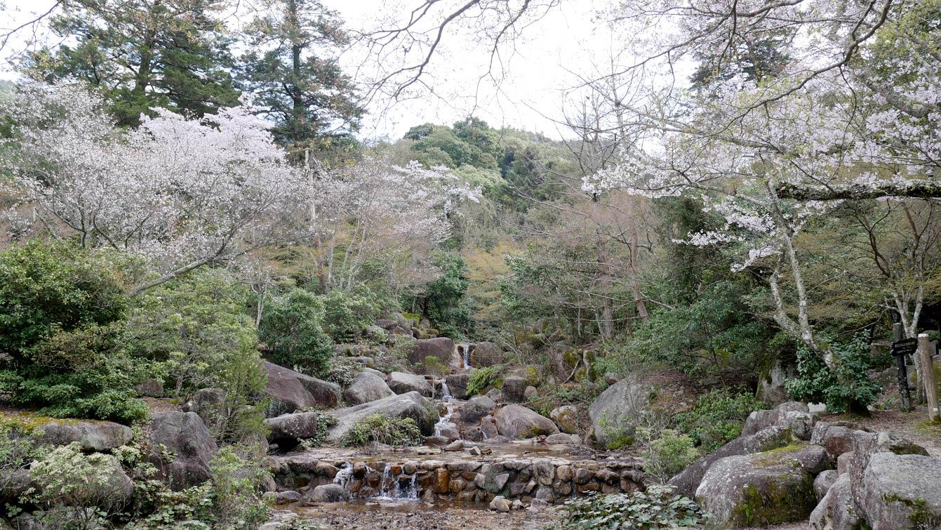 mont-misen-miyajima-japon-34