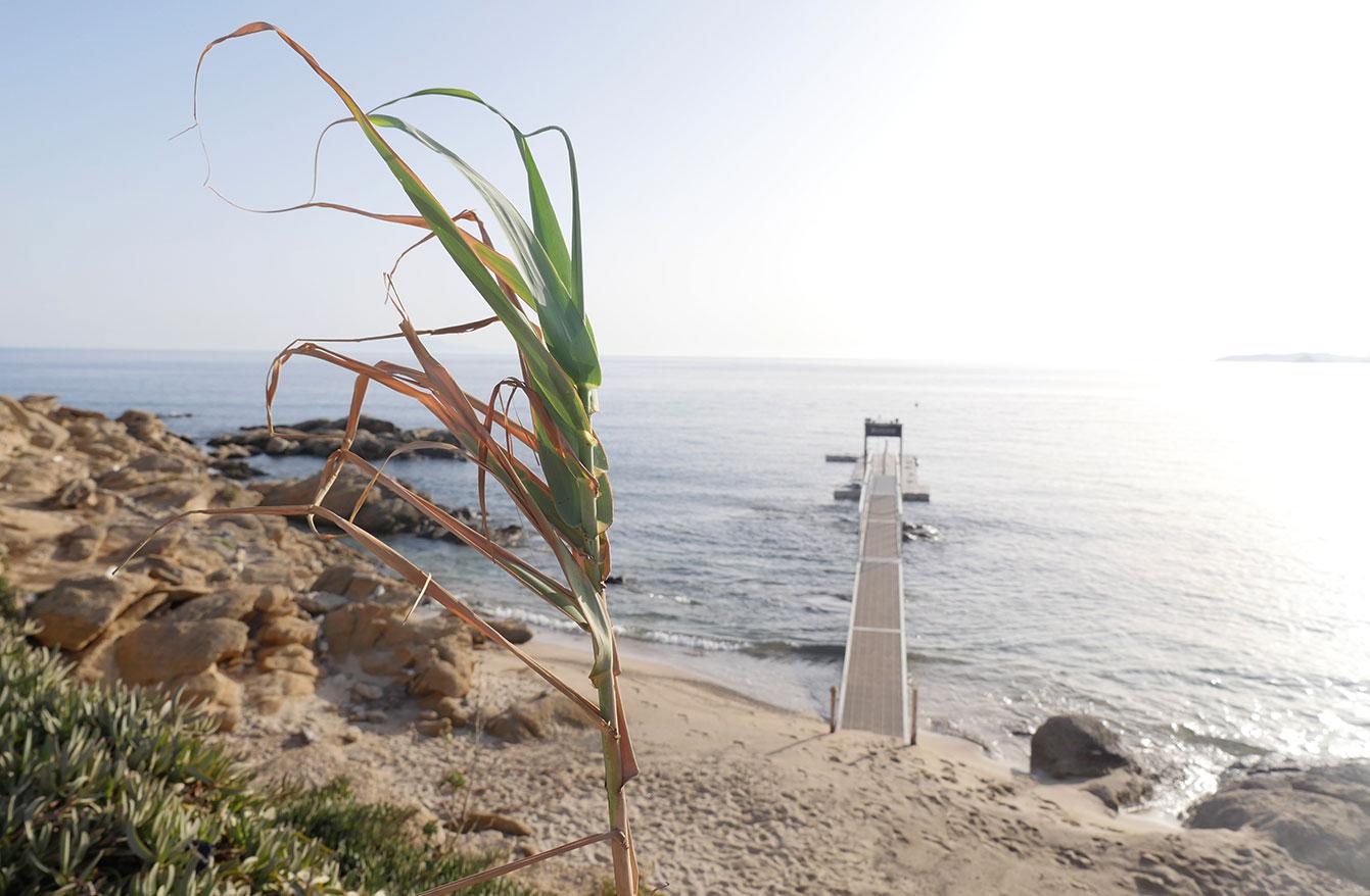 Scorpios (Mykonos)