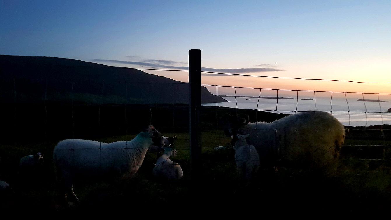 La péninsule de Waternish, la nuit avec moutons