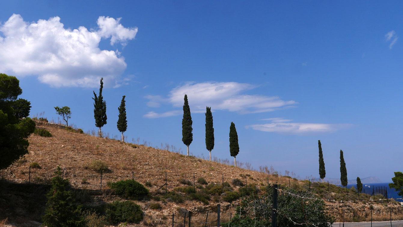 Kouzounos, Spetses